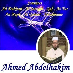 Ahmed Abdelhakim 歌手頭像