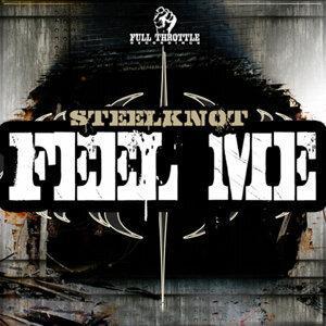 Steelknot 歌手頭像