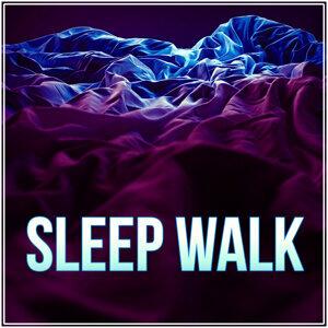 Sleep Music Dreamcatcher 歌手頭像