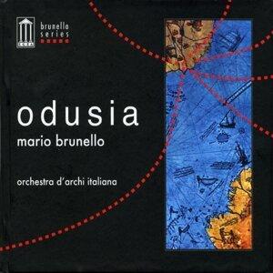 Mario Brunello & Orchestra d'Archi Italiana 歌手頭像