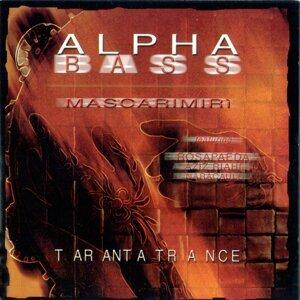 Alpha Bass 歌手頭像
