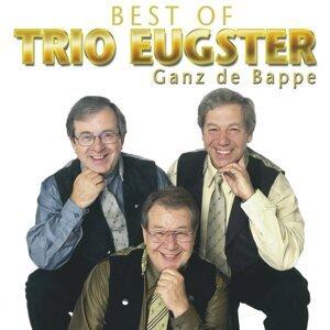 Trio Eugster 歌手頭像