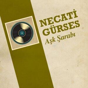 Necati Gürses 歌手頭像