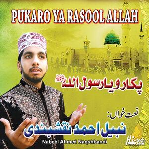 Nabeel Ahmed Naqshbandi 歌手頭像