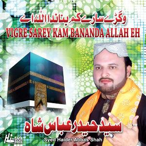 Syed Haider Abbas Shah 歌手頭像