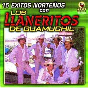 Llaneritos De Guamuchil 歌手頭像