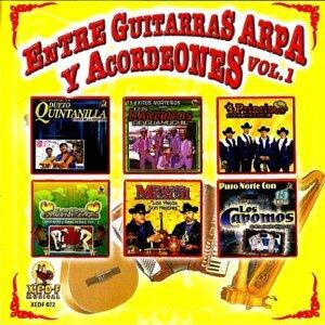 Entre Guitarras, Arpas Y Acordeones 歌手頭像