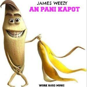James Weezy 歌手頭像