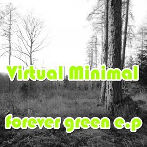 Virtual Minimal 歌手頭像