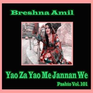Breshna Amil 歌手頭像