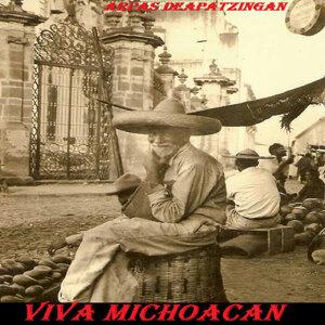 Viva Michoacan 歌手頭像
