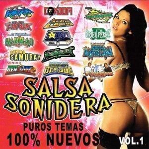 Salsa Sonidera 歌手頭像