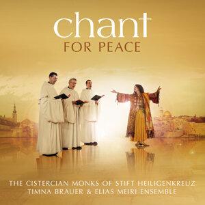 Timna Brauer & Elias Meiri Ensemble,The Cistercian Monks of Stift Heiligenkreuz 歌手頭像
