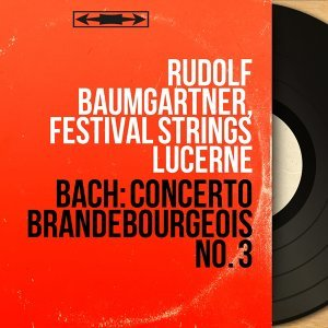 Rudolf Baumgartner, Festival Strings Lucerne