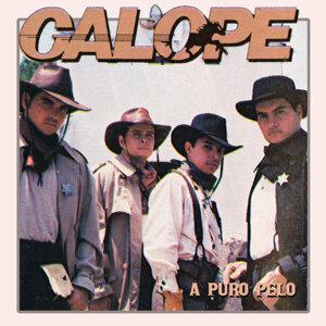 Galope 歌手頭像