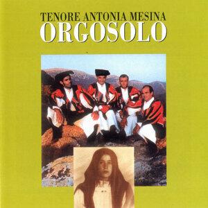 Tenore Antonia Mesina Orgosolo 歌手頭像