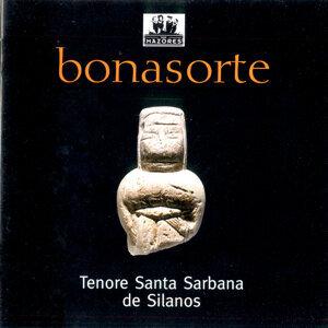 Tenore Santa Sarbana de Silanos 歌手頭像