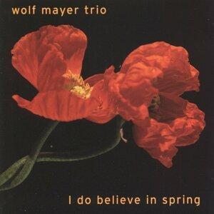 Wolf Mayer Trio 歌手頭像