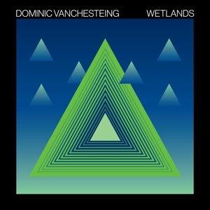 Dominic Vanchesteing 歌手頭像