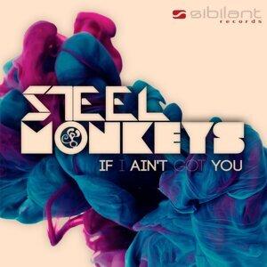 Steel Monkeys 歌手頭像