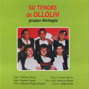 Su Tenore de Ollolai - Gruppo Barbagia 歌手頭像