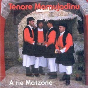 Tenore Mamujadinu 歌手頭像