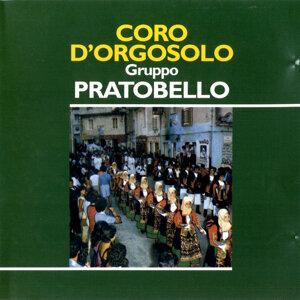Coro di Orgosolo Gruppo Pratobello 歌手頭像