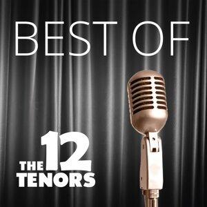 The 12 Tenors 歌手頭像