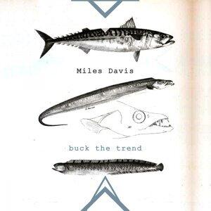 Miles Davis, Miles Davis & Lee Konitz Sextet 歌手頭像