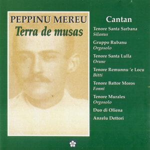 Peppinu Mereu - Terra de musas 歌手頭像