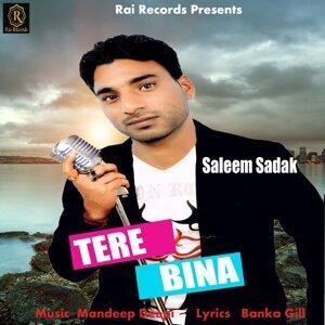 Saleem Sadak 歌手頭像