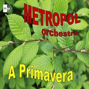 Orchestra Metropol 歌手頭像