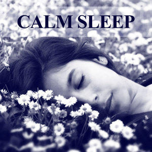Deep Sleep Music Society 歌手頭像