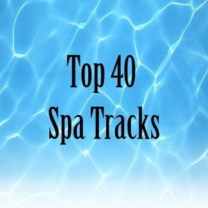 Pure Spa Massage Music