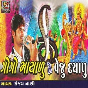 Sanjay Nani 歌手頭像