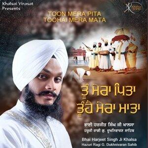 Bhai Harjeet Singh Ji Khalsa 歌手頭像