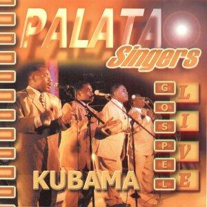 The Palata Singers 歌手頭像