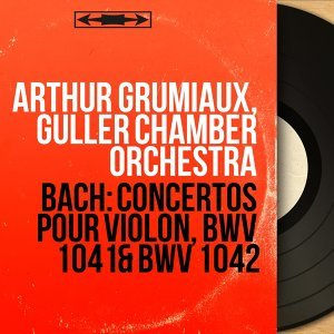 Arthur Grumiaux, Guller Chamber Orchestra 歌手頭像