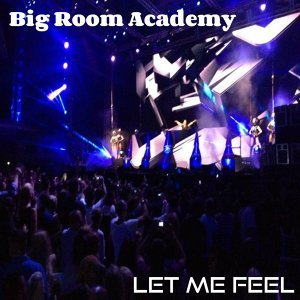Big Room Academy 歌手頭像
