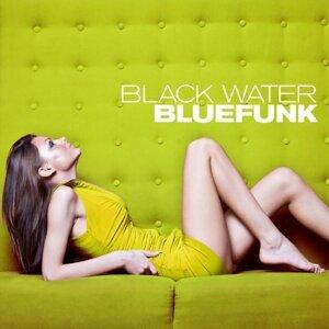 Bluefunk 歌手頭像