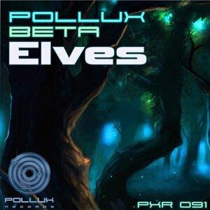 Pollux Beta 歌手頭像