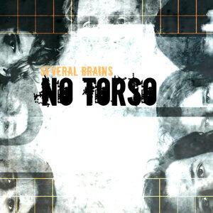No Torso 歌手頭像