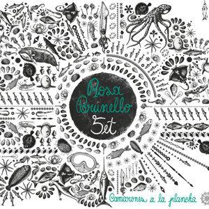 Rosa Brunello 5et feat. David Boato, Piero Bittolo Bon, Riccardo Chiarion & Luca Colussi 歌手頭像
