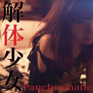Panchromatic 歌手頭像