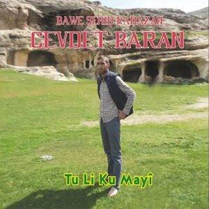 Cevdet Baran 歌手頭像