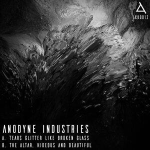 Anodyne Industries Artist photo