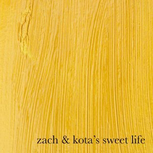 Zach and Kota's Sweet Life 歌手頭像