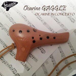Ocarine Gaggle 歌手頭像