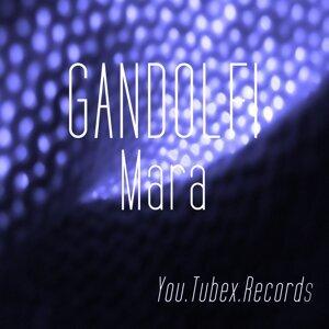 Gandolfi 歌手頭像