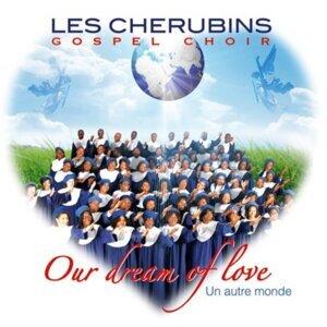 Les Chérubins de Sarcelles 歌手頭像